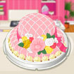Funny Pink Hat Cake